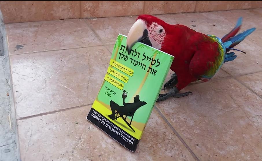 bookandbird